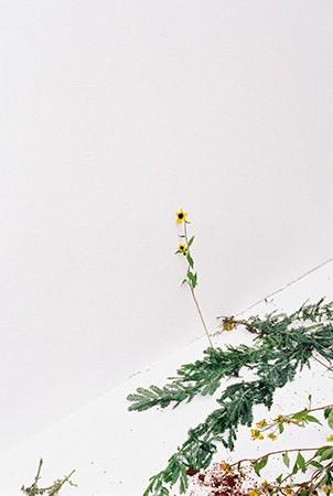 http://www.juyeonlee.com/files/gimgs/th-139_juyeonlee_kyyn_013.jpg